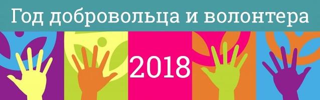 Год волонтера 2018